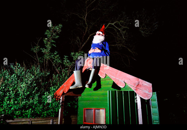 garden gnome on garden shed roof stock image