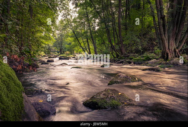 Lush landscape with rivet and nice light at summer time in Finland - Stock Image