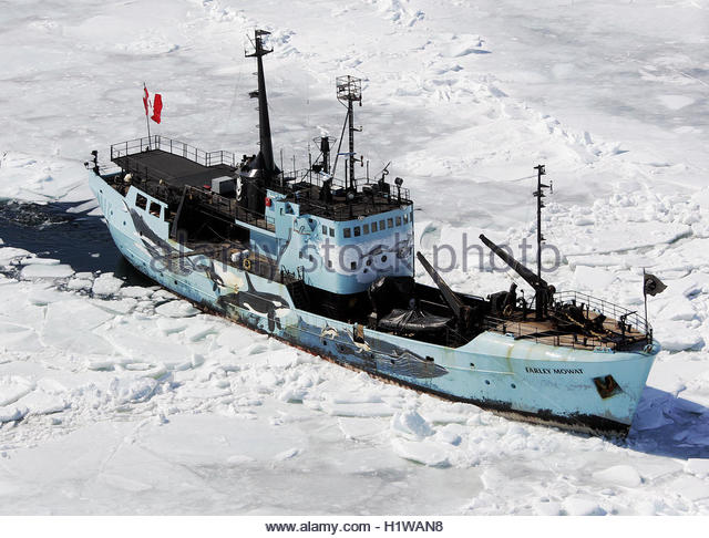 seal hunting in canadas coast angered animal rights activists Animal-rights activists have because seal hunting is an off-season activity conducted by fishers from canada's east coast canada's disgusting seal hunt.