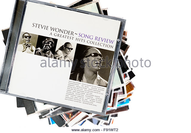 Stevie wonder essay