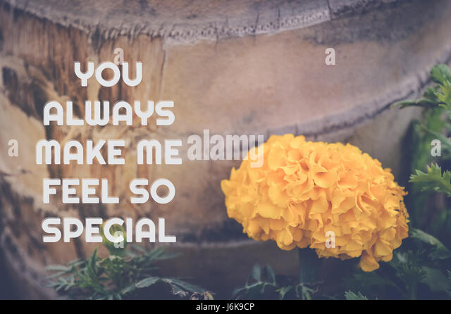 You Make Me Feel So Special Quotes: Quote Yellow Stock Photos & Quote Yellow Stock Images