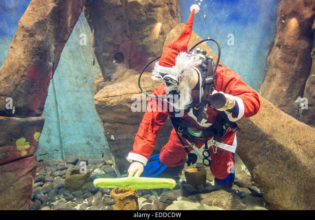 Zoo Wroclaw Stock Photos & Zoo Wroclaw Stock Images - Alamy