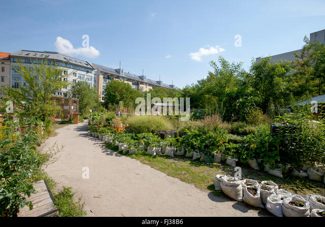 urban gardening berlin stock photos urban gardening berlin stock images alamy. Black Bedroom Furniture Sets. Home Design Ideas