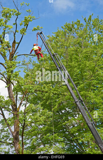 bosun chair navy. tree lopping from a bosun\u0027s chair mounted on lorry crane at lofer near salzburg bosun navy