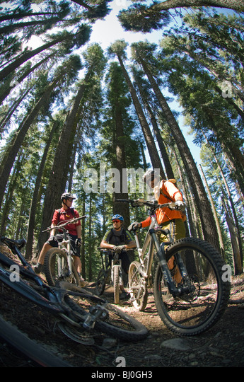 """downieville men Downieville beginings downieville is located were the downie river flows into the larger north fork of the yuba river first commonly known as """"the forks"""" the first generally confirmed white."""