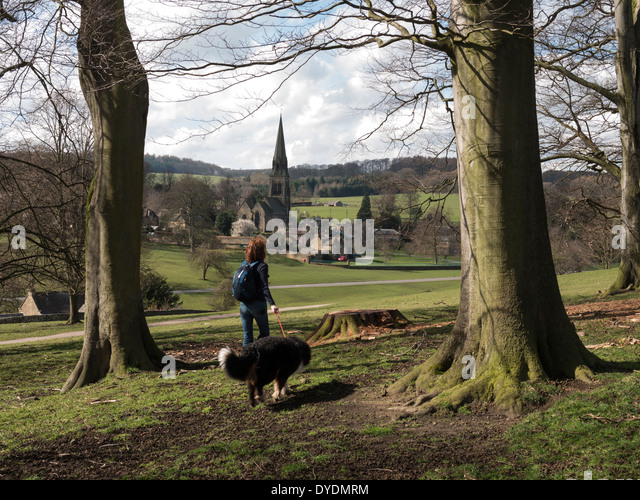 Chatsworth house dogs