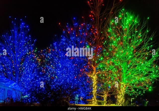 Christmas Tree Garden Lights Stock Photos Christmas Tree Garden Lights Stock Images Alamy