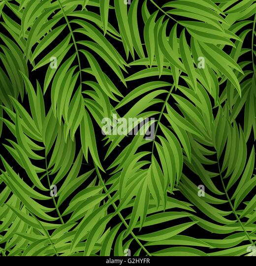 green palm leaves summer - photo #7