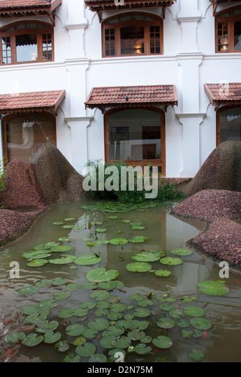 Artificial pond stock photos artificial pond stock for Koi pond builders near me