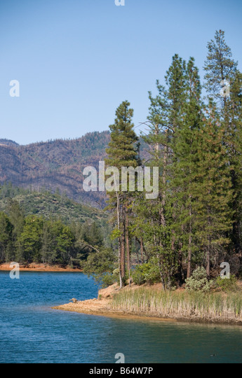 Crappie stock photos crappie stock images alamy for Whiskeytown lake fishing