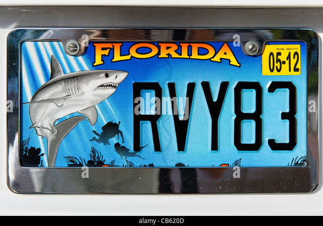 License stock photos license stock images alamy for Renew florida fishing license
