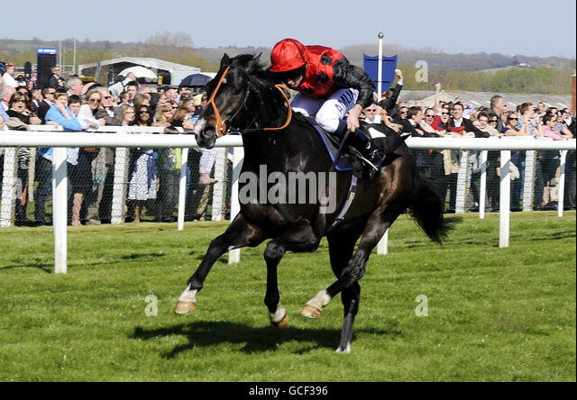 horse racing services