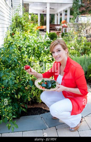 Pati Jinich Stock Photos & Pati Jinich Stock Images - Alamy