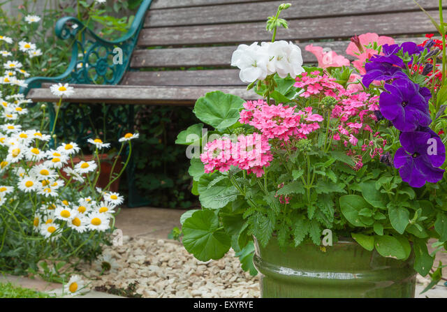 Planter flower bed stock photos planter flower bed stock - Wooden containers for flowers ...