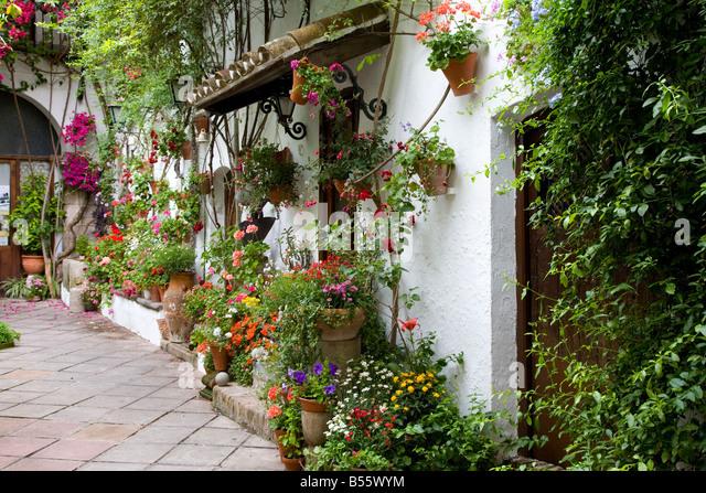 Plant Pots In A Mediterranean Courtyard Garden Part Of The Festival Stock Pho...