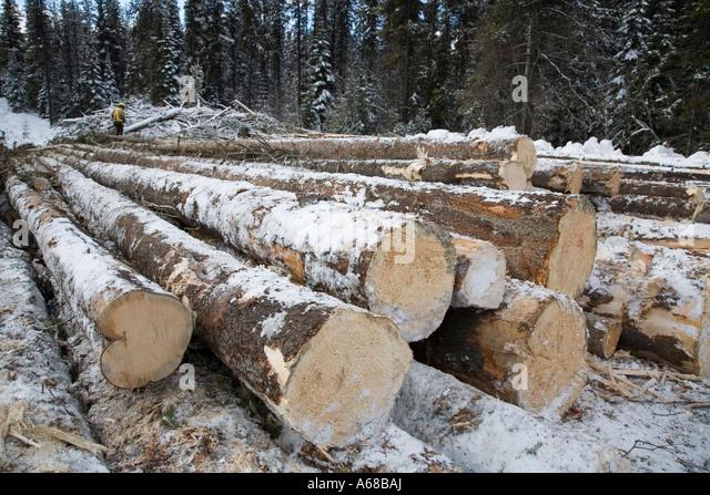 Skidder stock photos skidder stock images alamy for Hudson log