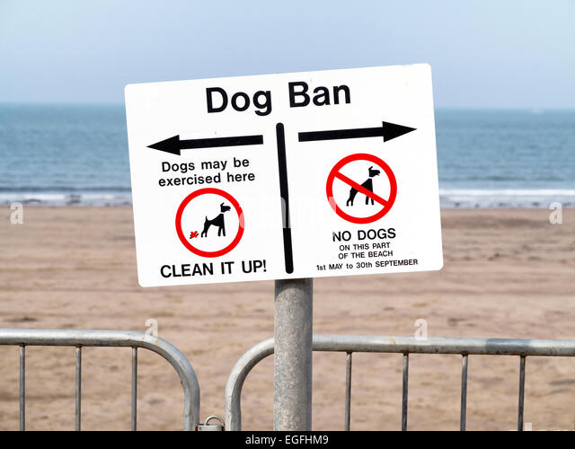 Dog Ban Filey Beach