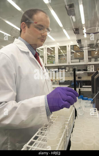 science lab arsenic Nasa-supported researchers have discovered the first known microorganism on earth able to thrive and reproduce using the toxic chemical arsenic the microorganism.