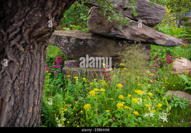 Best In Show Stock Photos Best In Show Stock Images Alamy