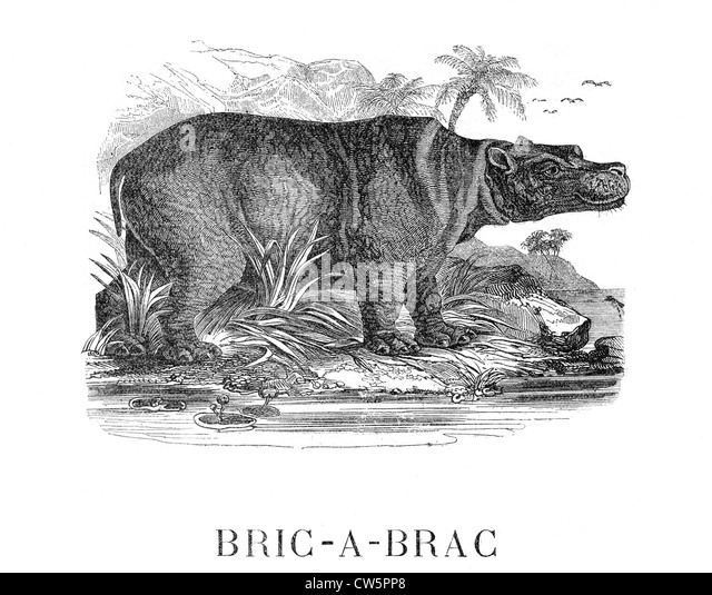 Bric a brac stock photos bric a brac stock images alamy - Broc a brac 51 ...