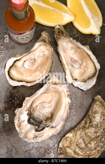 Fresh Oysters Stock Photos Amp Fresh Oysters Stock Images