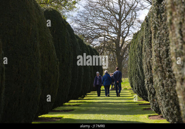 Outstanding Hinton Stock Photos  Hinton Stock Images  Alamy With Exciting Hinton Ampner House Stately Home With Gardens Within The Civil Parish Of  Bramdean And Hinton With Awesome Garden Design Ideas For Large Gardens Also Garden Swing And Slide Set In Addition Russian Garden And Botanic Garden Belfast As Well As Homewood Memorial Gardens Additionally Garden Decking Design Ideas From Alamycom With   Exciting Hinton Stock Photos  Hinton Stock Images  Alamy With Awesome Hinton Ampner House Stately Home With Gardens Within The Civil Parish Of  Bramdean And Hinton And Outstanding Garden Design Ideas For Large Gardens Also Garden Swing And Slide Set In Addition Russian Garden From Alamycom