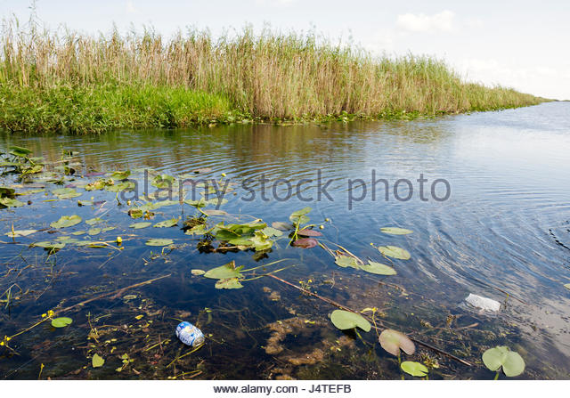 the ecosystem of the florida everglades The everglades is a subtropical wetland ecosystem spanning two million acres across central and south florida during the wet season, lake okeechobee overflows, releasing water into a very slow moving, shallow river dominated by sawgrass marsh—dubbed the river of grass.