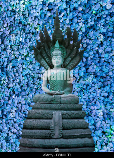 clover buddhist single men Single people are more able to devote themselves to the teachings of buddhism, since they don't have outside forces pulling their attention away 5 be ready to take a vow of chastity.