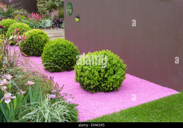 Topiary Box Balls Stock Photos Topiary Box Balls Stock Images