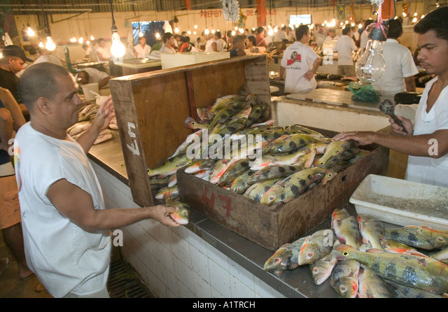 Manaus fish market stock photos manaus fish market stock for River fish market