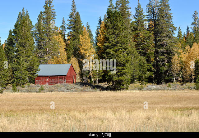 Cabin woods usa stock photos cabin woods usa stock for Sierra nevada cabine