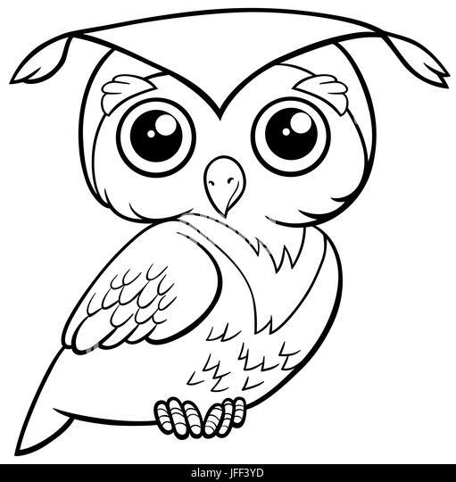 Cute Owl Stock Photos Amp Cute Owl Stock Images