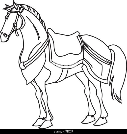 Warrior War Horse Stock Photos & Warrior War Horse Stock