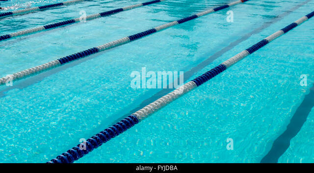 image of swimming pool the top view swimming pool with empty lanes stock