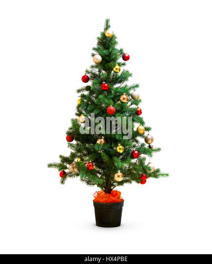 small decorated christmas tree isolated on white stock image - Small Decorated Christmas Trees