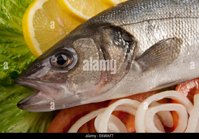 Fatty fish cut out stock photos fatty fish cut out stock for What are fatty fish