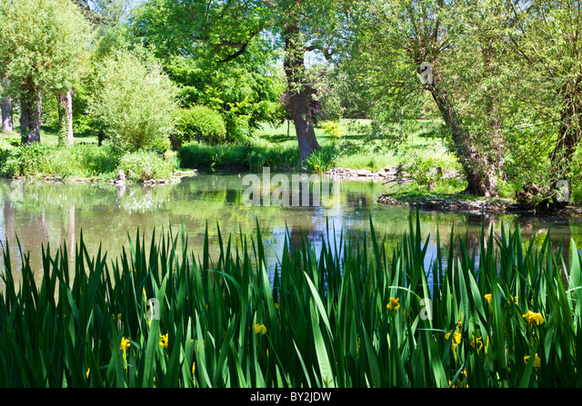 Small water feature garden stock photos small water for Ornamental garden ponds