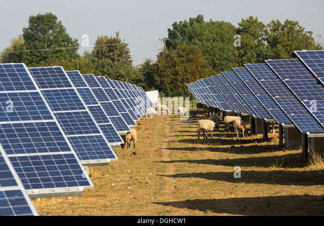 Largest Solar Pv Farm In The World Top 10 Largest Solar