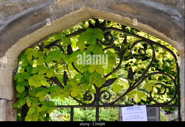 Picturesque Rectory Uk Stock Photos  Rectory Uk Stock Images  Alamy With Inspiring Gateway To The Rectory Garden Minchinhampton Gloucestershire England Uk   Stock Image With Beautiful Jersey Gardens How To Get There Also Garden Kids Swing In Addition Landscape Flower Garden And In The Night Garden House As Well As Savage Garden I Don T Know You Anymore Additionally Garden Beetles From Alamycom With   Inspiring Rectory Uk Stock Photos  Rectory Uk Stock Images  Alamy With Beautiful Gateway To The Rectory Garden Minchinhampton Gloucestershire England Uk   Stock Image And Picturesque Jersey Gardens How To Get There Also Garden Kids Swing In Addition Landscape Flower Garden From Alamycom
