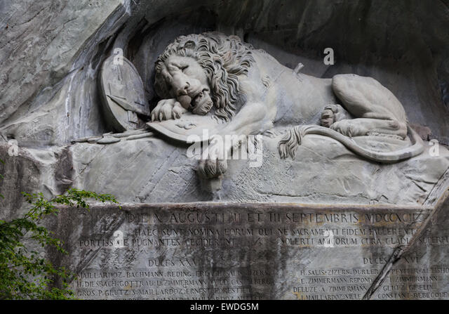 the dying lioness With tenor, maker of gif keyboard, add popular lioness animated gifs to your  conversations share the best gifs now.
