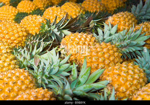 pineapple comosus fruit reunion stock photos pineapple comosus fruit reunion stock images alamy. Black Bedroom Furniture Sets. Home Design Ideas