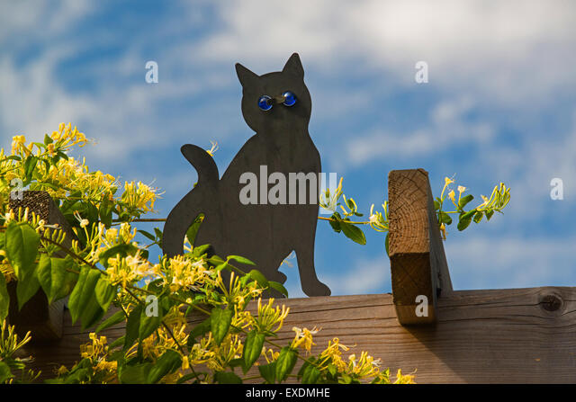 Deterrents stock photos deterrents stock images alamy - How to keep intruders out of your garden ...