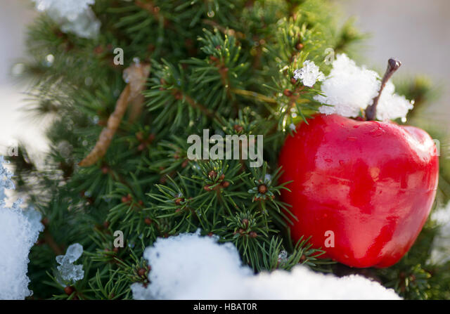 Natural christmas tree decorations stock photos natural for Apple tree decoration