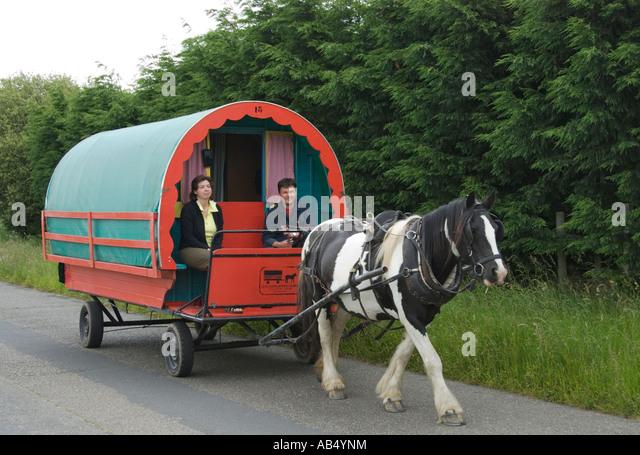 Fantastic Clissman  Horse Drawn Caravan Holidays In Ireland  YouGoDo