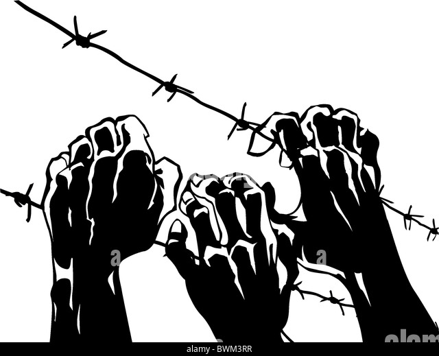 Vector Silhouette Of The Barbed Wire On White Background  Stock Image  M