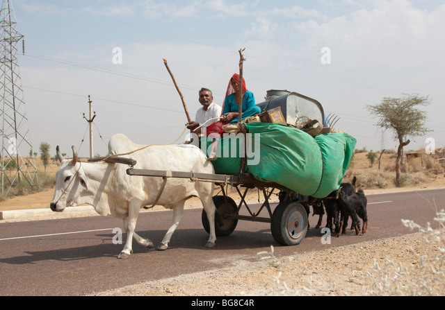 Cow Pulling Wagon : Cow pulling cart in india stock photos