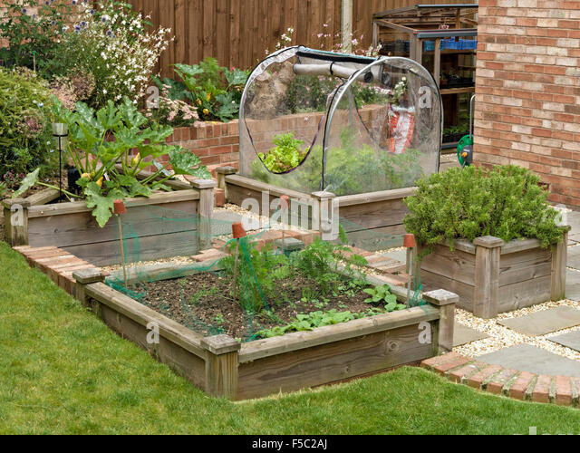 Wooden planters stock photos wooden planters stock for Domestic garden ideas