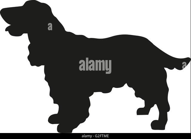 cocker spaniel silhouette stock image