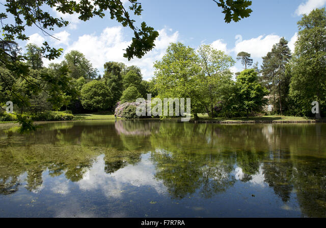 Landscape Garden Surrey : Claremont surrey stock photos