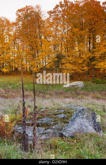 Stowe countryside vermont stock photos stowe countryside Usa countryside pictures